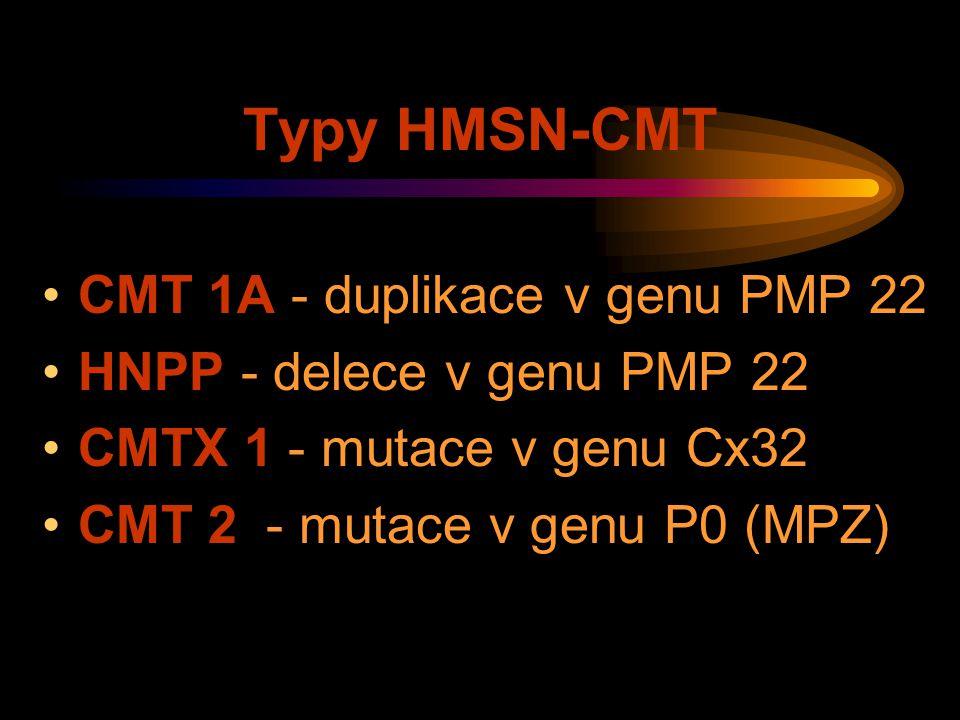 Typy HMSN-CMT CMT 1A - duplikace v genu PMP 22 HNPP - delece v genu PMP 22 CMTX 1 - mutace v genu Cx32 CMT 2 - mutace v genu P0 (MPZ)