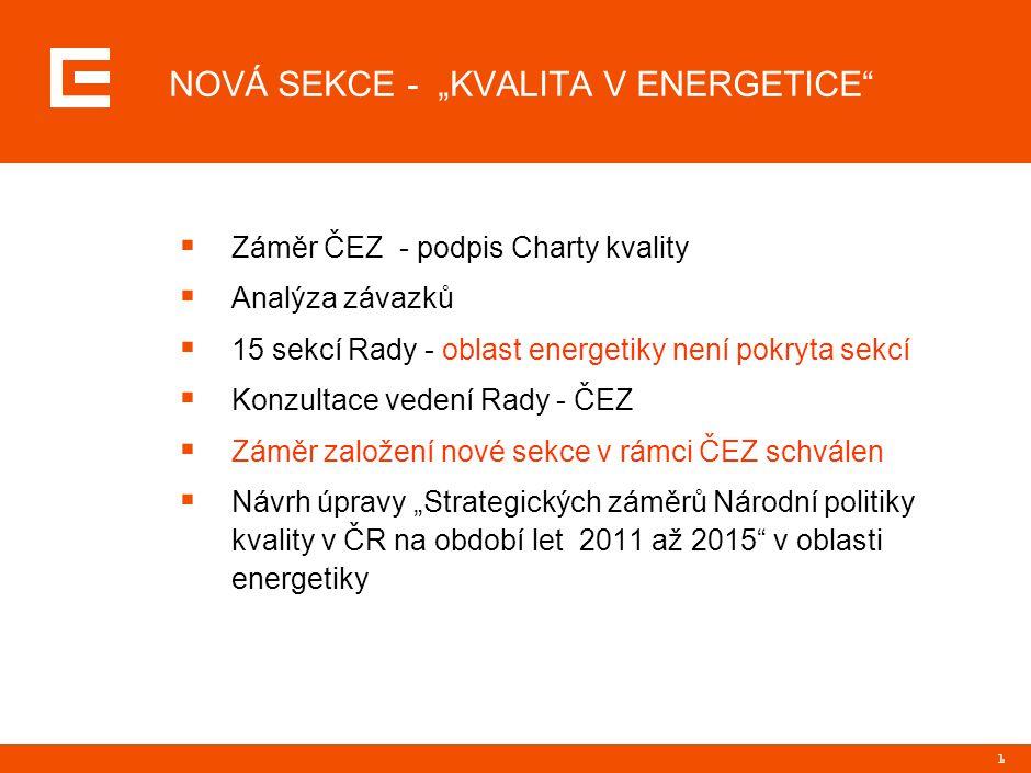 2 PŘÍNOSY ZALOŽENÍ SEKCE  Získání platformy pro řešení specifických problémů v oblasti kvality a systémů řízení v oboru energetiky  Soulad s vládní politikou ČR - reakce na požadavky zákazníka, soulad s evropskými trendy, naplňování společenského očekávání  Synergické efekty se Společenskou odpovědností organizace, novými Politikami ČEZ (kvalita, bezpečnost)  Lepší vnímání energetických společností ze strany veřejnosti  Koordinace problematik s jinými odbornými sekcemi – koordinace energetického oboru