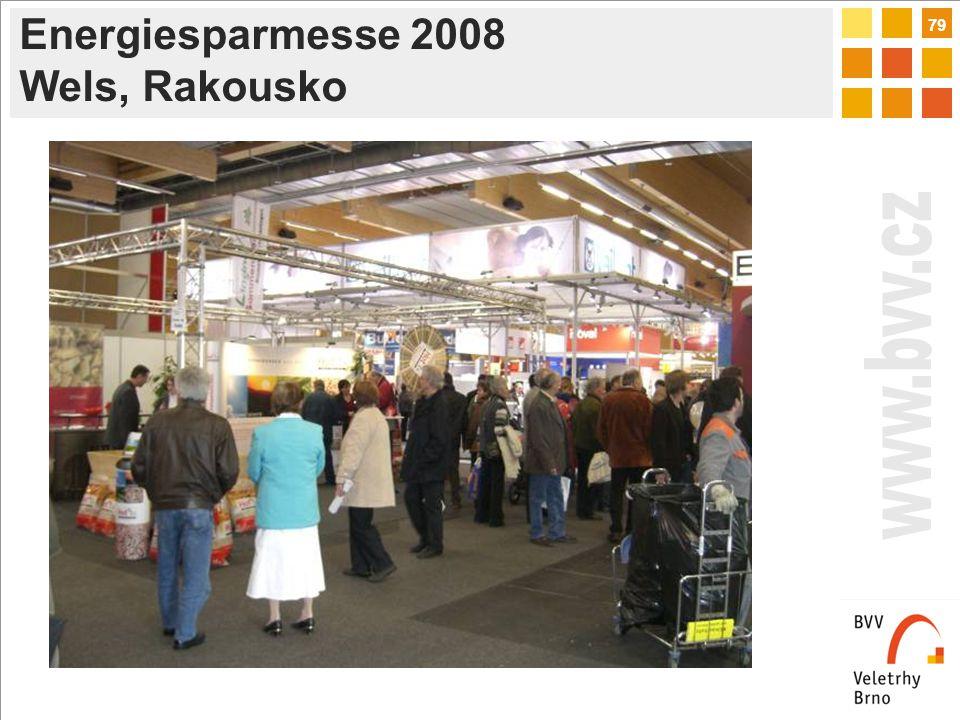 79 Energiesparmesse 2008 Wels, Rakousko