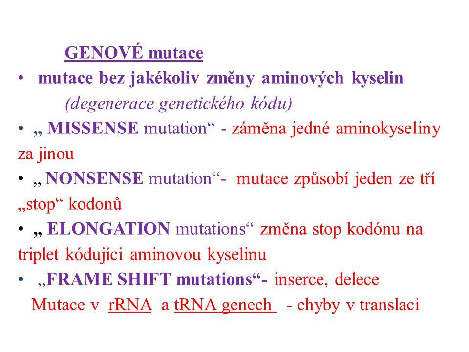 """GENOVÉ mutace mutace bez jakékoliv změny aminových kyselin (degenerace genetického kódu) """" MISSENSE mutation"""" - záměna jedné aminokyseliny za jinou """""""
