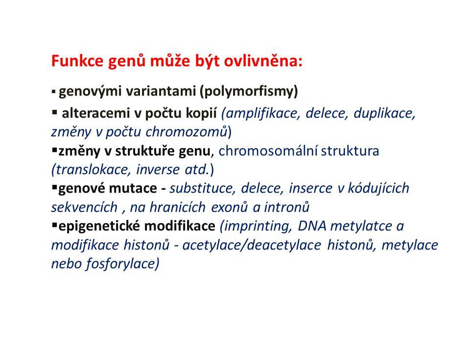 Funkce genů může být ovlivněna:  genovými variantami (polymorfismy)  alteracemi v počtu kopií (amplifikace, delece, duplikace, změny v počtu chromoz