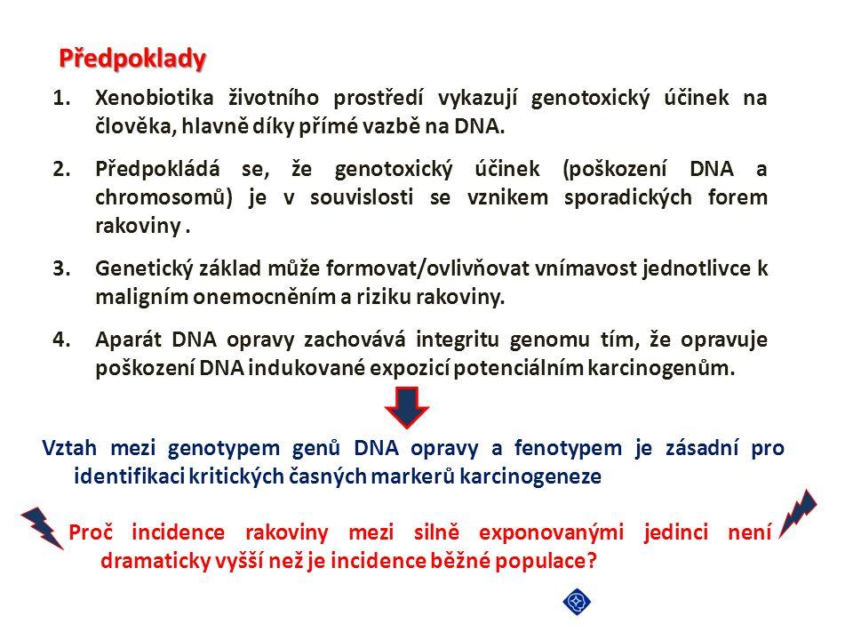 Předpoklady 1.Xenobiotika životního prostředí vykazují genotoxický účinek na člověka, hlavně díky přímé vazbě na DNA. 2.Předpokládá se, že genotoxický
