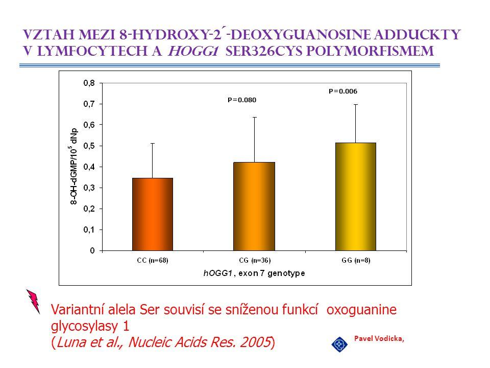 P=0.080 P=0.006 Vztah mezi 8-hydroxy-2´-deoxyguanosine adduckty v lymfocytech a hOGG1 Ser326Cys polymorfismem Pavel Vodicka, Variantní alela Ser souvi