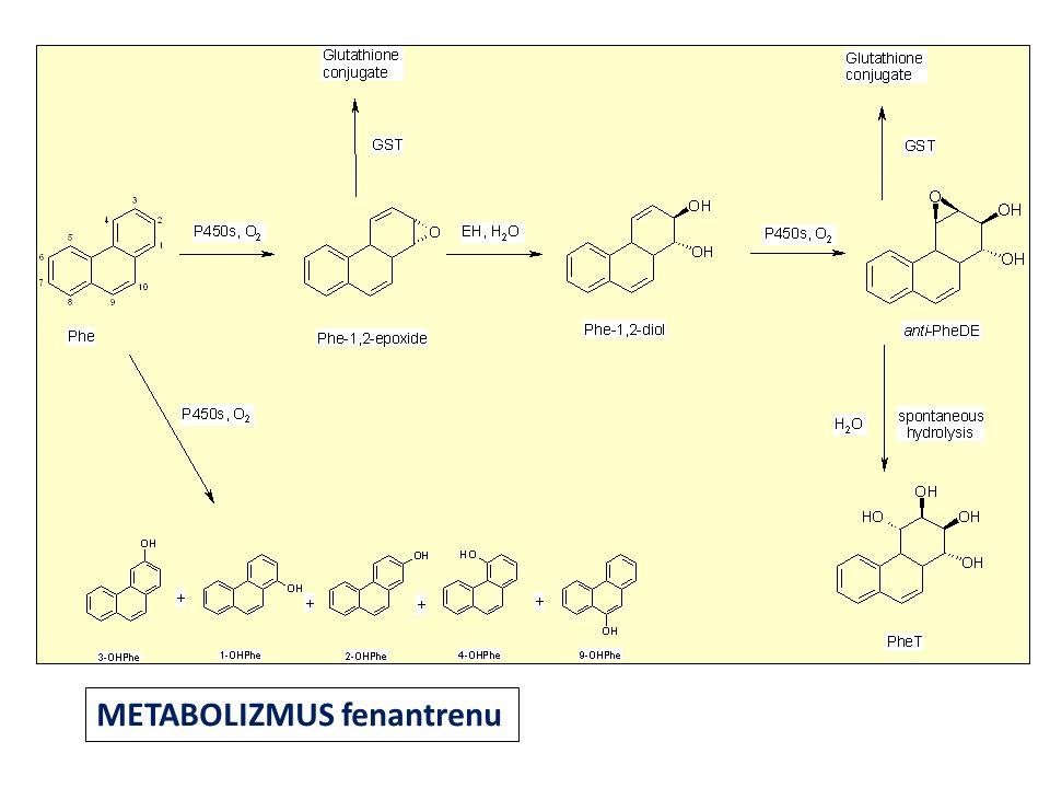 styrene styrene oxide (SO) styrene glycol (SG) mandelic acid (MA) phenylglyoxylic acid (PGA) CYP2E1 EPHX1 GSTs PHEMA 1PHEMA 2 CYP2E1*5A, *6, *1B, *1D EPHX1 Tyr113His EPHX1 His139Arg GSTM1 GSTT1 GSTP1 ADH ADH2 *1/*2 ADH3 *1/*2 Metabolizmus styrénu