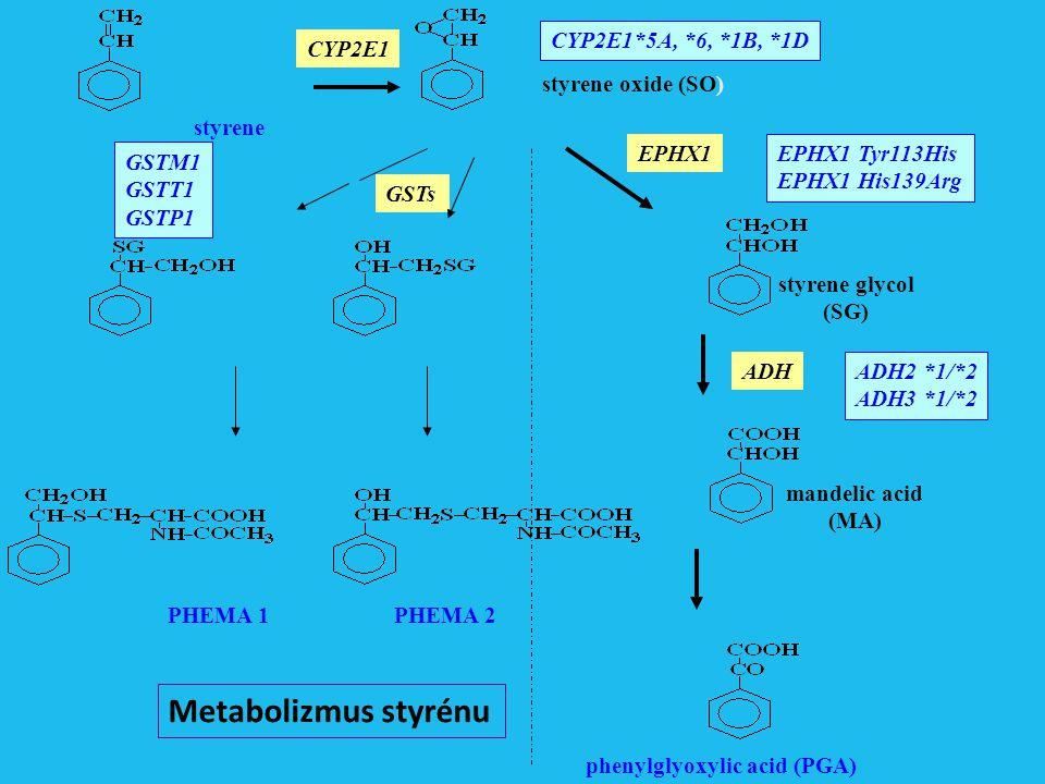 styrene styrene oxide (SO) styrene glycol (SG) mandelic acid (MA) phenylglyoxylic acid (PGA) CYP2E1 EPHX1 GSTs PHEMA 1PHEMA 2 CYP2E1*5A, *6, *1B, *1D