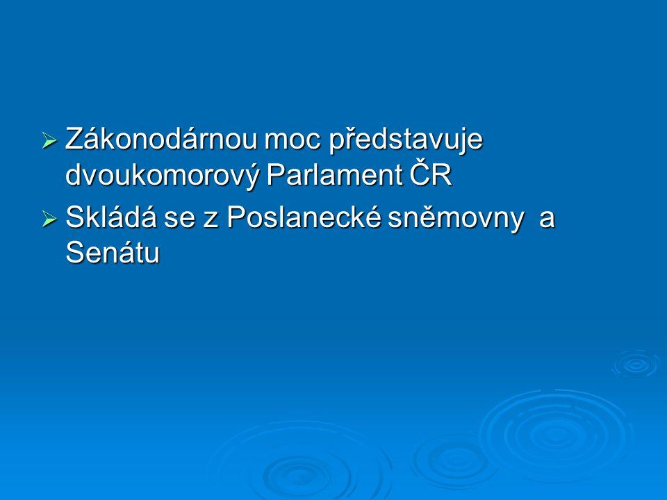Poslanecká sněmovna  Sněmovna je dynamičtější komora, má více pravomocí než Senát  Její hlavní činností je tvorba a schvalování zákonů (účast na legislativním procesu)  Sněmovna přijímá všechny návrhy zákonů, poslanci nebo skupina poslanců také navrhují zákony, projednávají je a schvalují