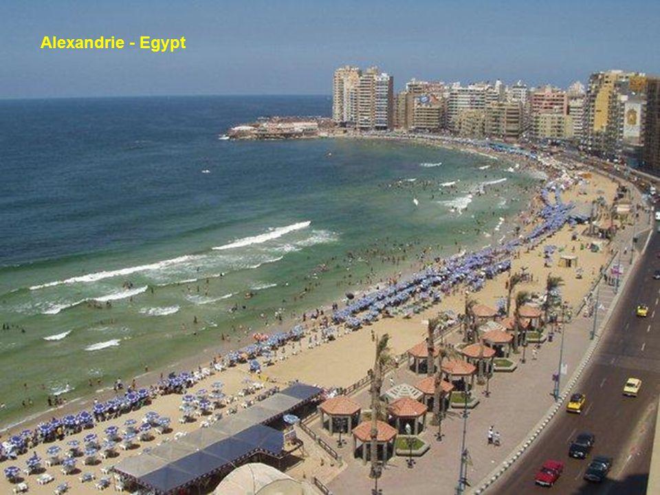 Oblast podél Nilu v Egyptě