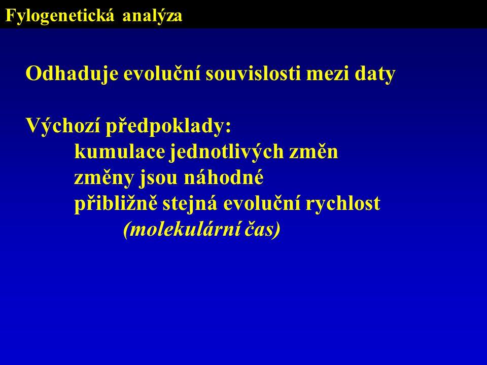 Fylogenetická analýza Odhaduje evoluční souvislosti mezi daty Výchozí předpoklady: kumulace jednotlivých změn změny jsou náhodné přibližně stejná evoluční rychlost (molekulární čas)