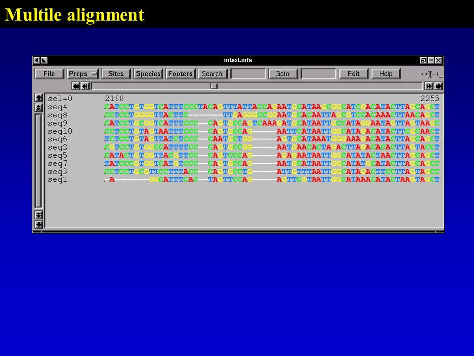 Multile alignment