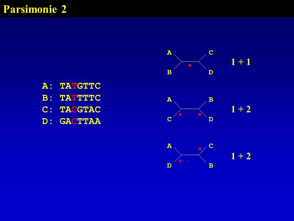 Parsimonie 2 AC BD A: TATGTTC B: TATTTTC C: TACGTAC D: GACTTAA AB CD AC DB 1 + 1 1 + 2