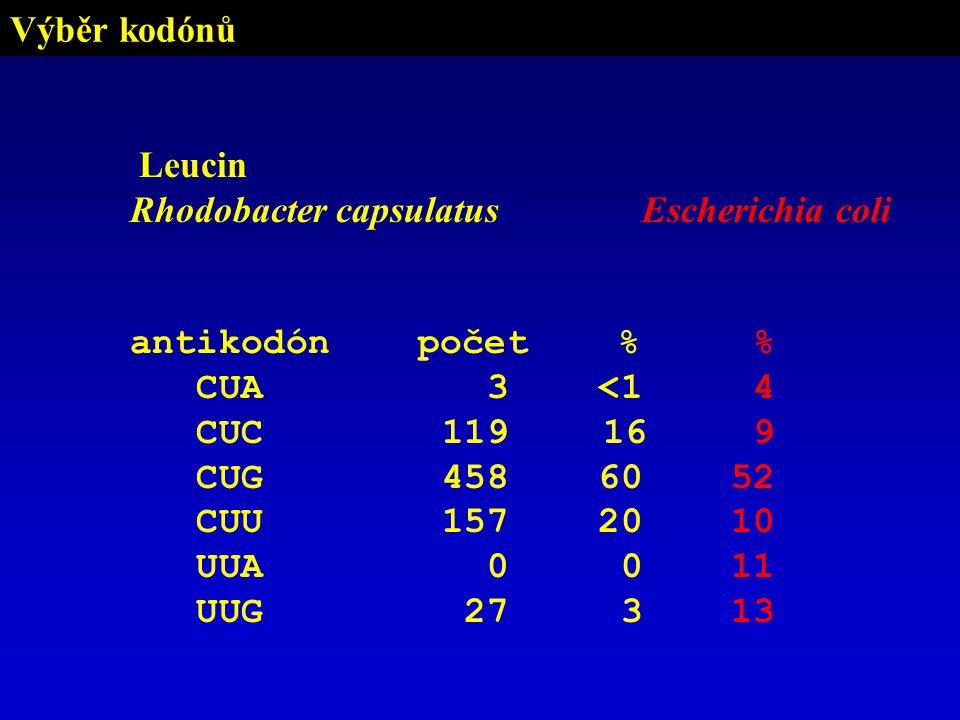 Výběr kodónů Leucin Rhodobacter capsulatus antikodónpočet % CUA 3 <1 CUC 119 16 CUG 458 60 CUU 157 20 UUA 0 0 UUG 27 3 Escherichia coli % 4 9 52 10 11 13