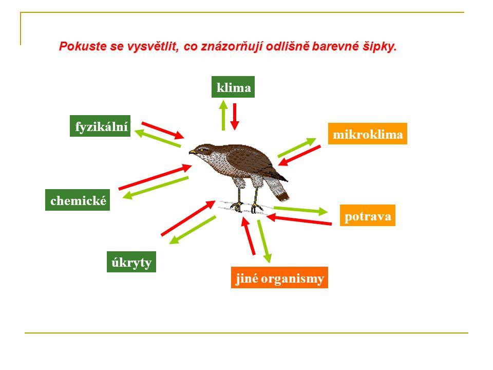 mikroklima potrava jiné organismy klima fyzikální chemické úkryty Pokuste se vysvětlit, co znázorňují odlišně barevné šipky.