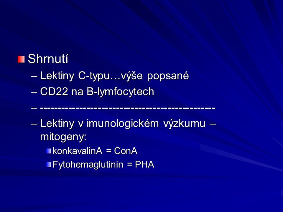 Shrnutí –Lektiny C-typu…výše popsané –CD22 na B-lymfocytech –------------------------------------------------ –Lektiny v imunologickém výzkumu – mitog