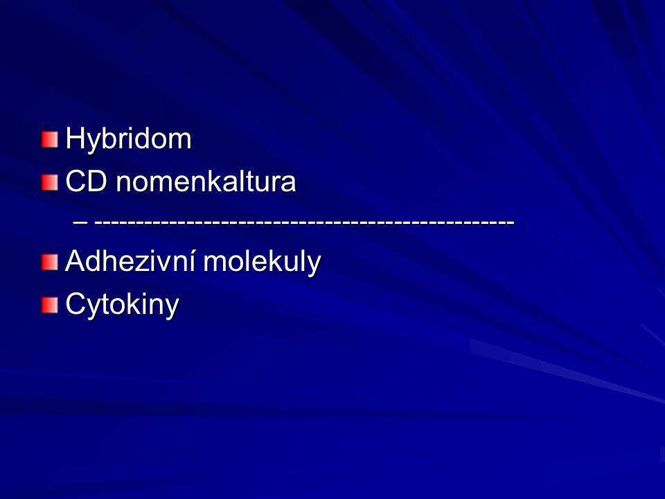Hybridom CD nomenkaltura –------------------------------------------------- Adhezivní molekuly Cytokiny