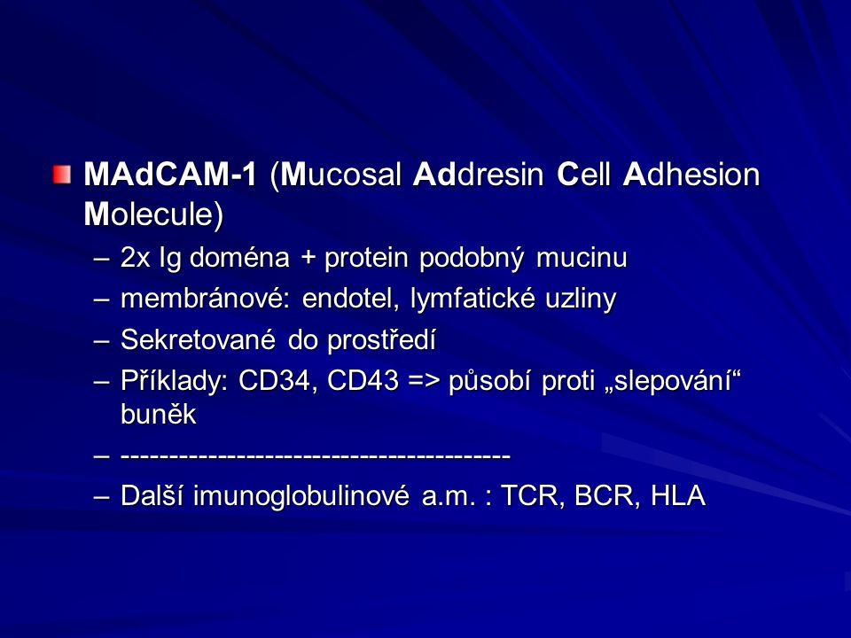 MAdCAM-1 (Mucosal Addresin Cell Adhesion Molecule) –2x Ig doména + protein podobný mucinu –membránové: endotel, lymfatické uzliny –Sekretované do pros