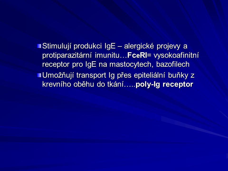 Stimulují produkci IgE – alergické projevy a protiparazitární imunitu…Fc e RI= vysokoafinitní receptor pro IgE na mastocytech, bazofilech Umožňují tra