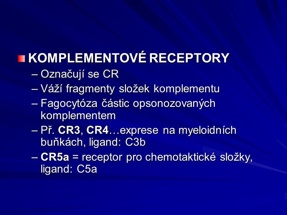 KOMPLEMENTOVÉ RECEPTORY –Označují se CR –Váží fragmenty složek komplementu –Fagocytóza částic opsonozovaných komplementem –Př. CR3, CR4…exprese na mye