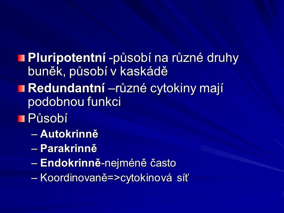 Pluripotentní -působí na různé druhy buněk, působí v kaskádě Redundantní –různé cytokiny mají podobnou funkci Působí –Autokrinně –Parakrinně –Endokrin