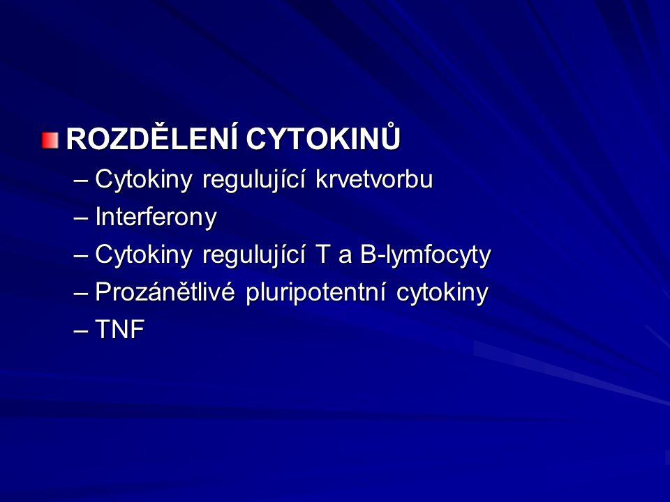 ROZDĚLENÍ CYTOKINŮ –Cytokiny regulující krvetvorbu –Interferony –Cytokiny regulující T a B-lymfocyty –Prozánětlivé pluripotentní cytokiny –TNF