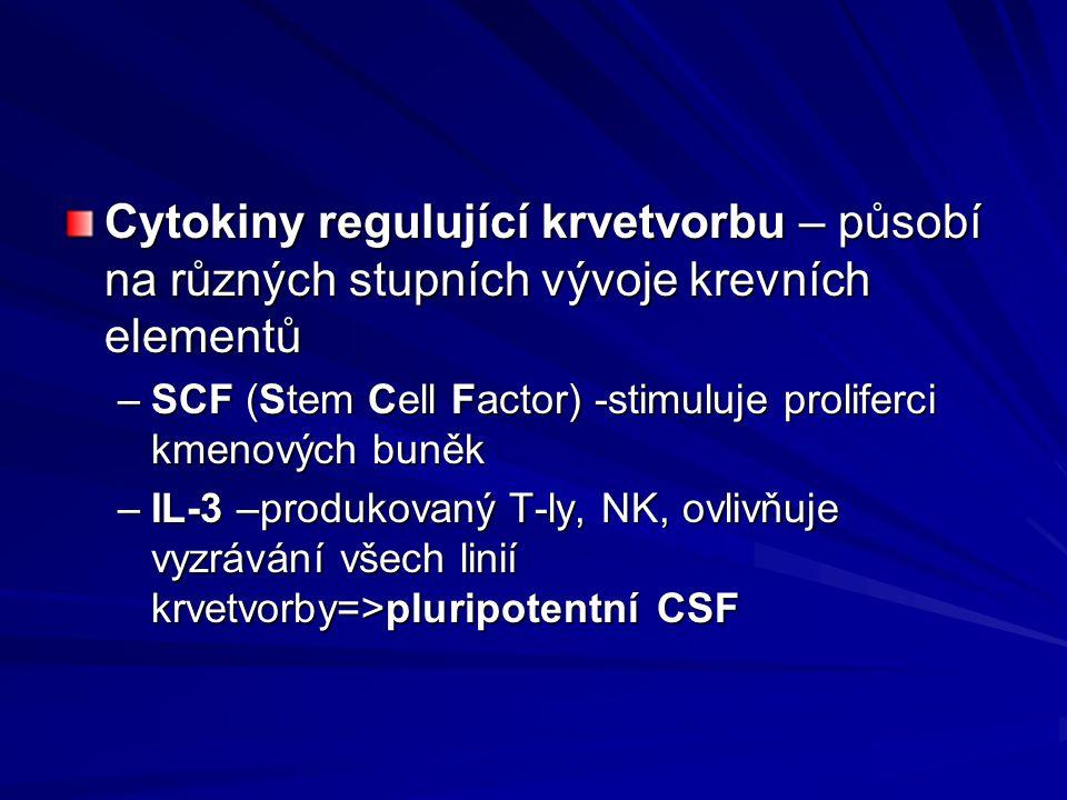 Cytokiny regulující krvetvorbu – působí na různých stupních vývoje krevních elementů –SCF (Stem Cell Factor) -stimuluje proliferci kmenových buněk –IL