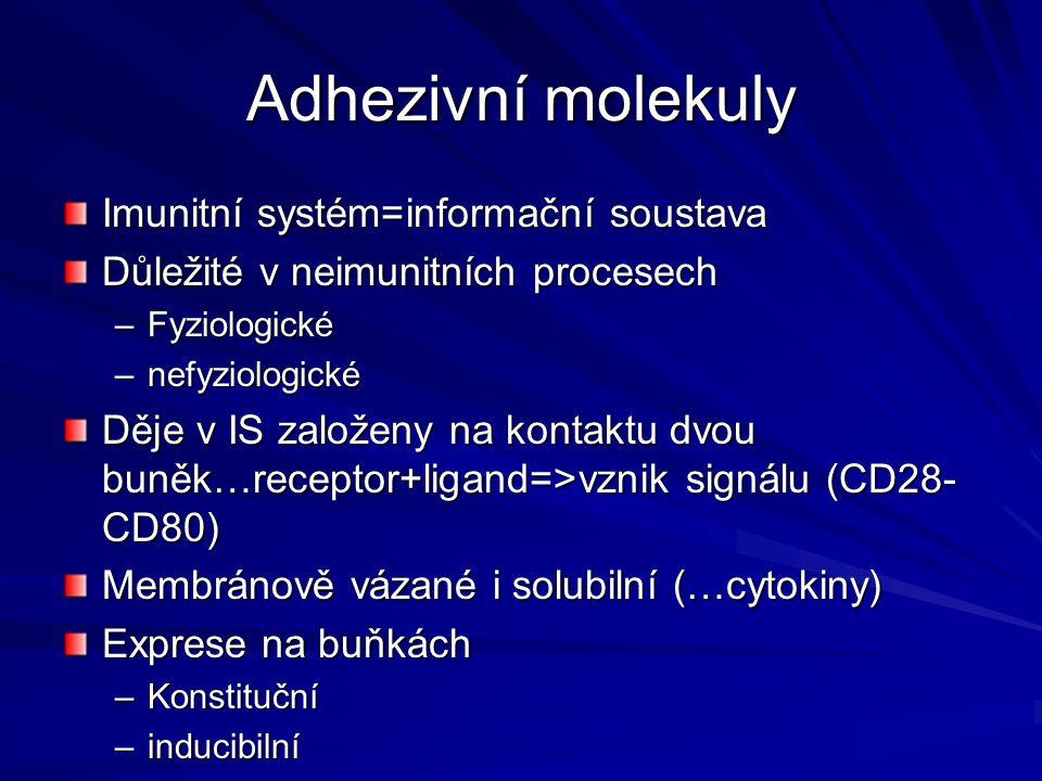 Adhezivní molekuly Imunitní systém=informační soustava Důležité v neimunitních procesech –Fyziologické –nefyziologické Děje v IS založeny na kontaktu