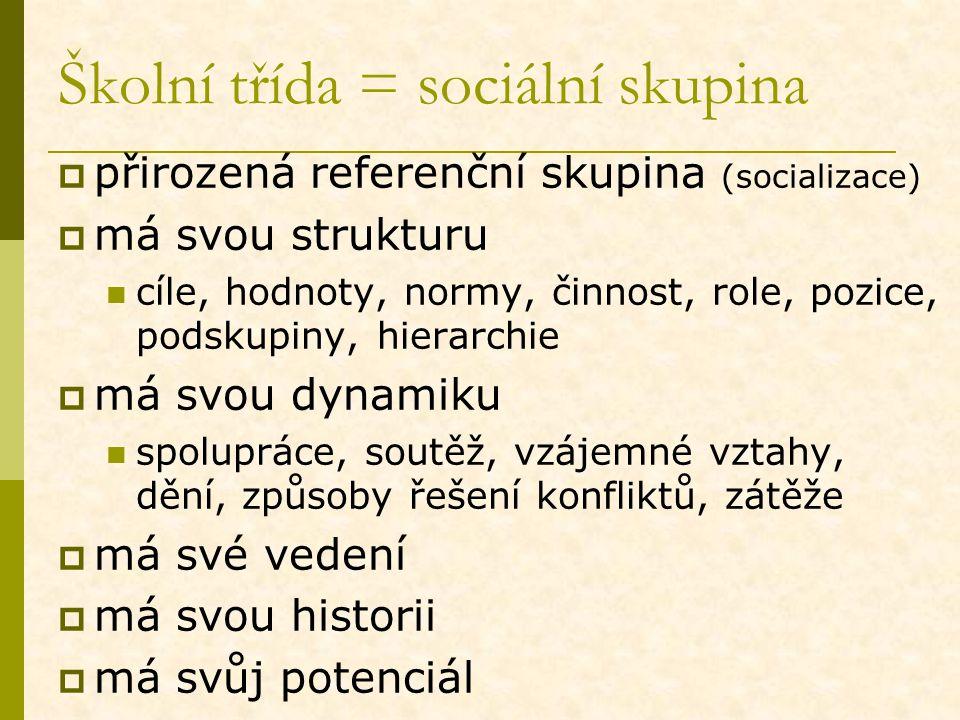 Školní třída = sociální skupina  přirozená referenční skupina (socializace)  má svou strukturu cíle, hodnoty, normy, činnost, role, pozice, podskupi