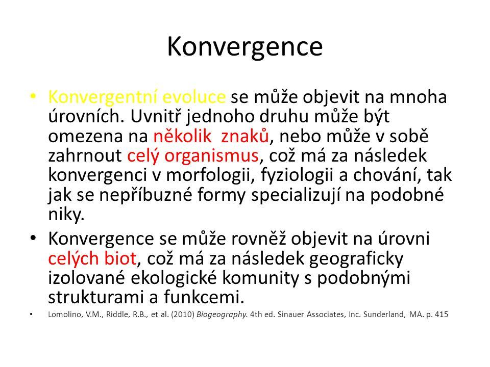 Konvergence Konvergentní evoluce se může objevit na mnoha úrovních. Uvnitř jednoho druhu může být omezena na několik znaků, nebo může v sobě zahrnout
