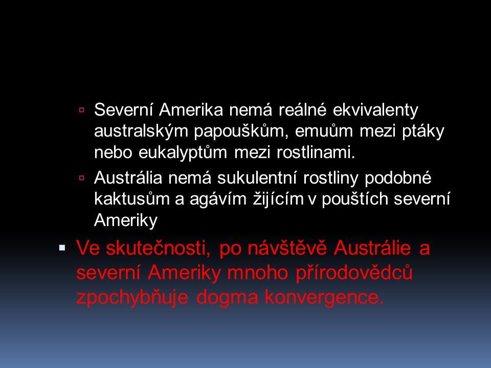  Severní Amerika nemá reálné ekvivalenty australským papouškům, emuům mezi ptáky nebo eukalyptům mezi rostlinami.  Austrália nemá sukulentní rostlin