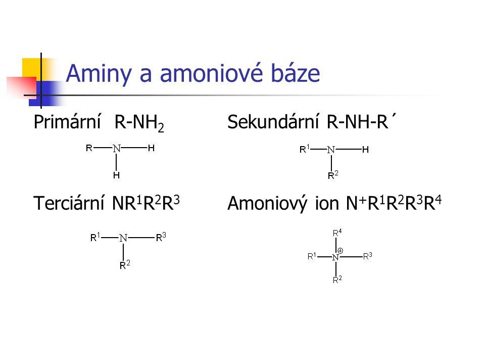 Aminy a amoniové báze Primární R-NH 2 Sekundární R-NH-R´ Terciární NR 1 R 2 R 3 Amoniový ion N + R 1 R 2 R 3 R 4