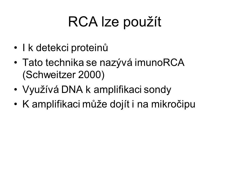 RCA lze použít I k detekci proteinů Tato technika se nazývá imunoRCA (Schweitzer 2000) Využívá DNA k amplifikaci sondy K amplifikaci může dojít i na m