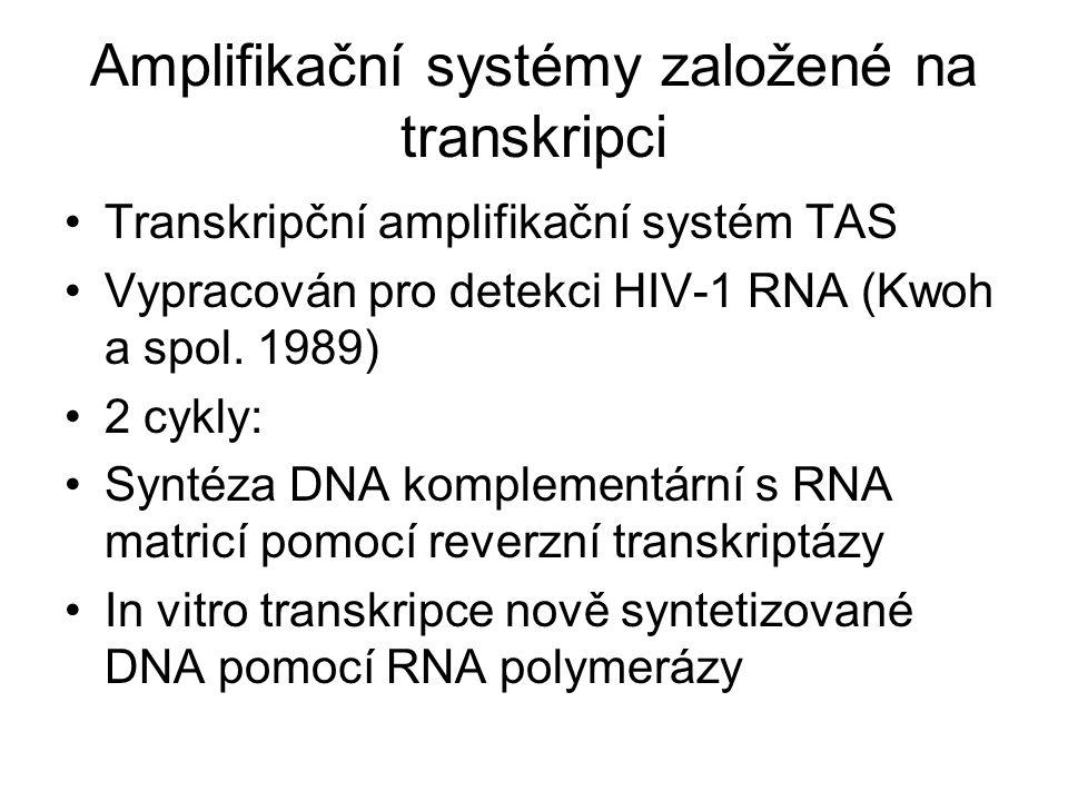 Amplifikační systémy založené na transkripci Transkripční amplifikační systém TAS Vypracován pro detekci HIV-1 RNA (Kwoh a spol. 1989) 2 cykly: Syntéz