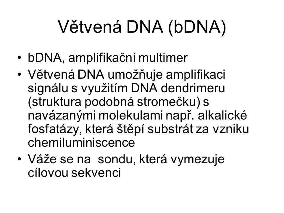 Větvená DNA (bDNA) bDNA, amplifikační multimer Větvená DNA umožňuje amplifikaci signálu s využitím DNA dendrimeru (struktura podobná stromečku) s navá