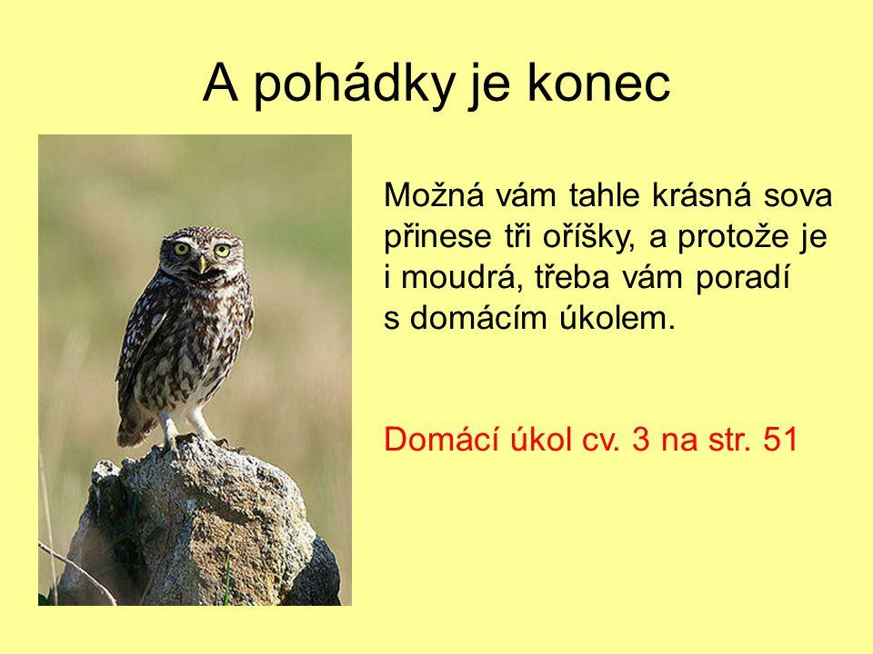 A pohádky je konec Možná vám tahle krásná sova přinese tři oříšky, a protože je i moudrá, třeba vám poradí s domácím úkolem. Domácí úkol cv. 3 na str.