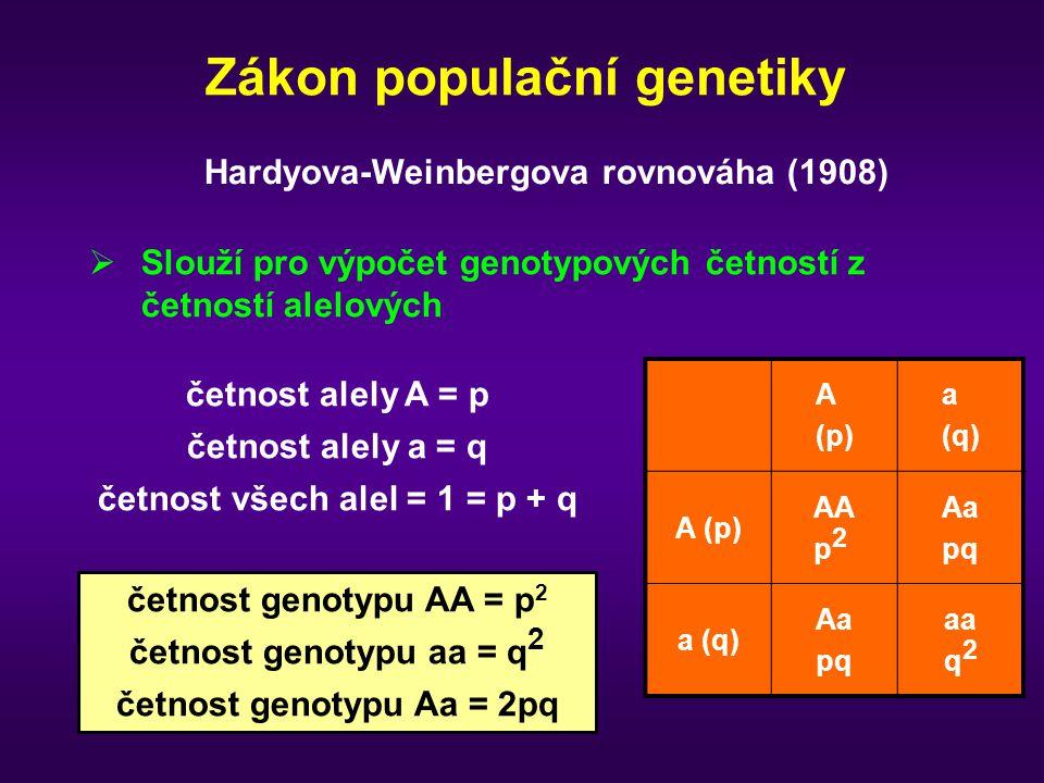 Hardy-Weinbergův zákon 1) Frekvence tří genotypů AA, Aa, aa odpovídá binomické distribuci Obecně pro a n alel s četnostmi p 1, p 2, … p n Genotypové frekvence = (p 1 + p 2 + …..