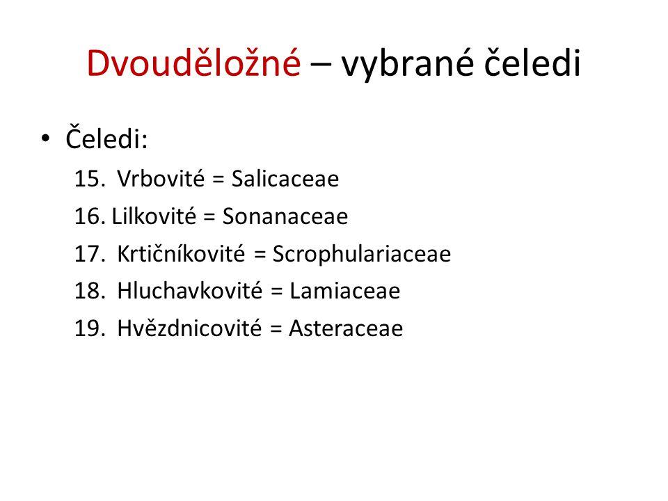 Dvouděložné – vybrané čeledi Čeledi: 15. Vrbovité = Salicaceae 16.Lilkovité = Sonanaceae 17. Krtičníkovité = Scrophulariaceae 18. Hluchavkovité = Lami
