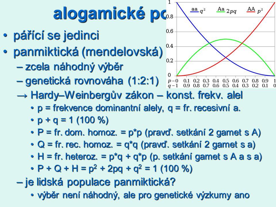alogamické populace pářící se jedincipářící se jedinci panmiktická (mendelovská)panmiktická (mendelovská) –zcela náhodný výběr –genetická rovnováha (1