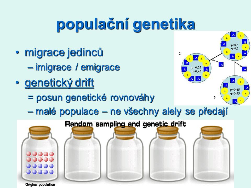 populační genetika migrace jedincůmigrace jedinců –imigrace / emigrace genetický driftgenetický driftgenetický driftgenetický drift = posun genetické