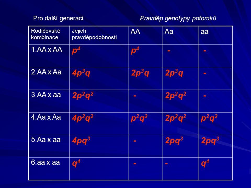 Pro další generaci Rodičovské kombinace Jejich pravděpodobnosti AAAaaa 1.AA x AA p4p4 p4p4 - - 2.AA x Aa 4p 3 q2p 3 q - 3.AA x aa 2p 2 q 2 - - 4.Aa x