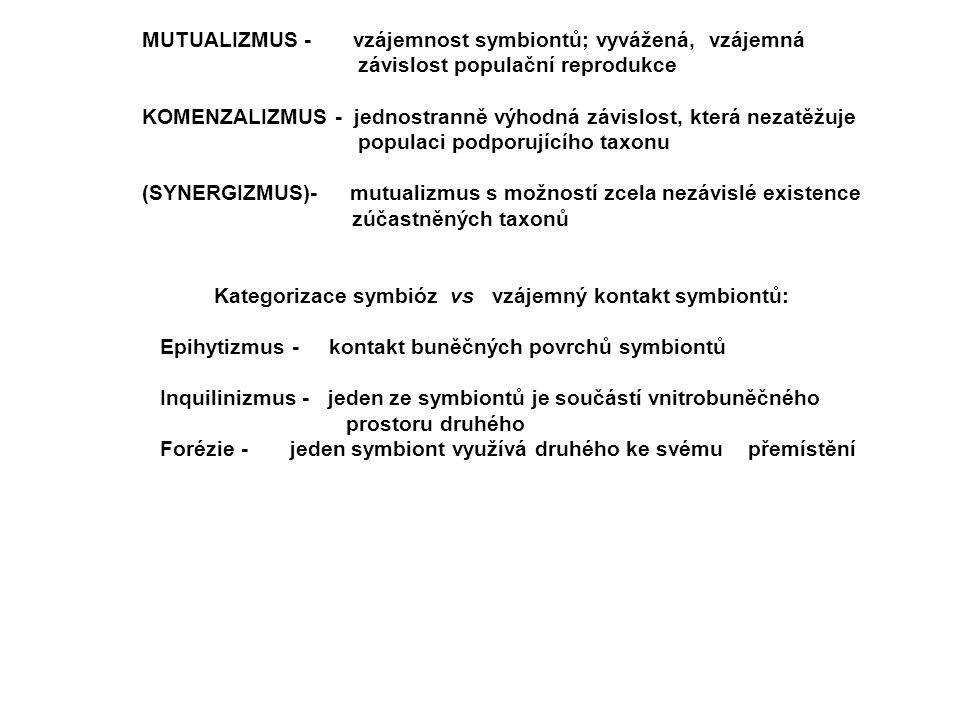 MUTUALIZMUS - vzájemnost symbiontů; vyvážená, vzájemná závislost populační reprodukce KOMENZALIZMUS - jednostranně výhodná závislost, která nezatěžuje populaci podporujícího taxonu (SYNERGIZMUS)- mutualizmus s možností zcela nezávislé existence zúčastněných taxonů Kategorizace symbióz vs vzájemný kontakt symbiontů: Epihytizmus - kontakt buněčných povrchů symbiontů Inquilinizmus - jeden ze symbiontů je součástí vnitrobuněčného prostoru druhého Forézie - jeden symbiont využívá druhého ke svému přemístění