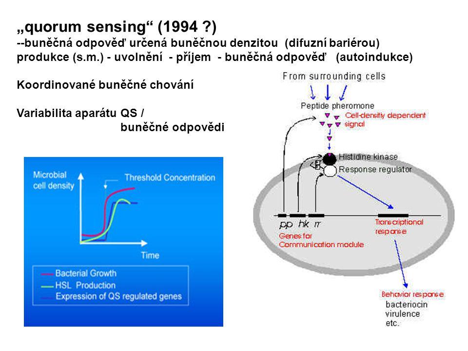 """""""quorum sensing (1994 ?) --buněčná odpověď určená buněčnou denzitou (difuzní bariérou) produkce (s.m.) - uvolnění - příjem - buněčná odpověď (autoindukce) Koordinované buněčné chování Variabilita aparátu QS / buněčné odpovědi"""