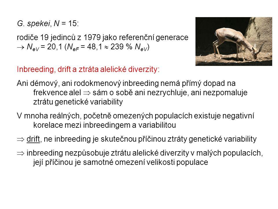 G. spekei, N = 15: rodiče 19 jedinců z 1979 jako referenční generace  N eV = 20,1 (N eF = 48,1  239 % N eV ) Inbreeding, drift a ztráta alelické div