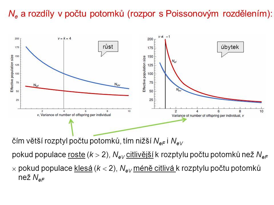 N e a rozdíly v počtu potomků (rozpor s Poissonovým rozdělením): čím větší rozptyl počtu potomků, tím nižší N eF i N eV pokud populace roste (k  2), N eV citlivější k rozptylu počtu potomků než N eF  pokud populace klesá (k  2), N eV méně citlivá k rozptylu počtu potomků než N eF růst úbytek