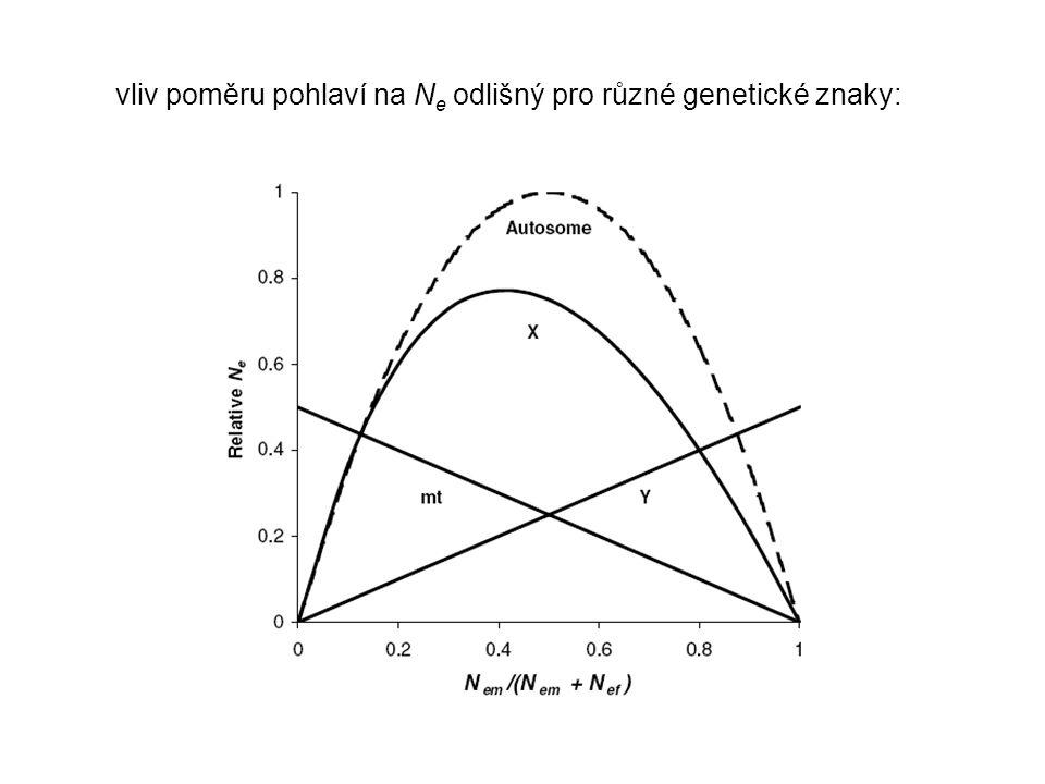 vliv poměru pohlaví na N e odlišný pro různé genetické znaky: