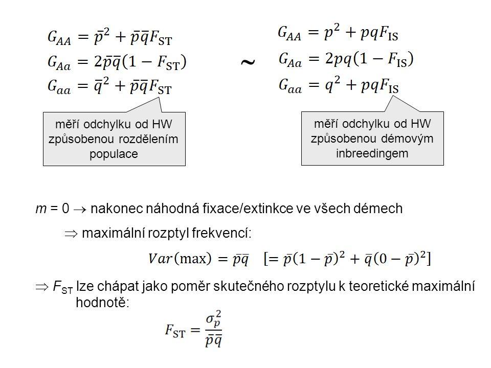 měří odchylku od HW způsobenou démovým inbreedingem měří odchylku od HW způsobenou rozdělením populace  m = 0  nakonec náhodná fixace/extinkce ve všech démech  maximální rozptyl frekvencí:  F ST lze chápat jako poměr skutečného rozptylu k teoretické maximální hodnotě: