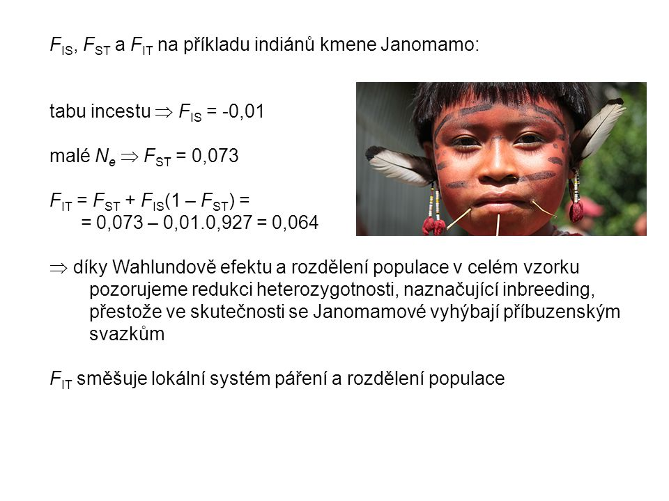 F IS, F ST a F IT na příkladu indiánů kmene Janomamo: tabu incestu  F IS = -0,01 malé N e  F ST = 0,073 F IT = F ST + F IS (1 – F ST ) = = 0,073 – 0