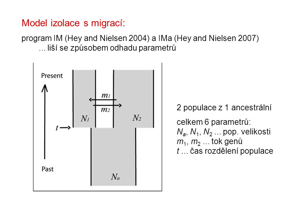 Model izolace s migrací: program IM (Hey and Nielsen 2004) a IMa (Hey and Nielsen 2007)...