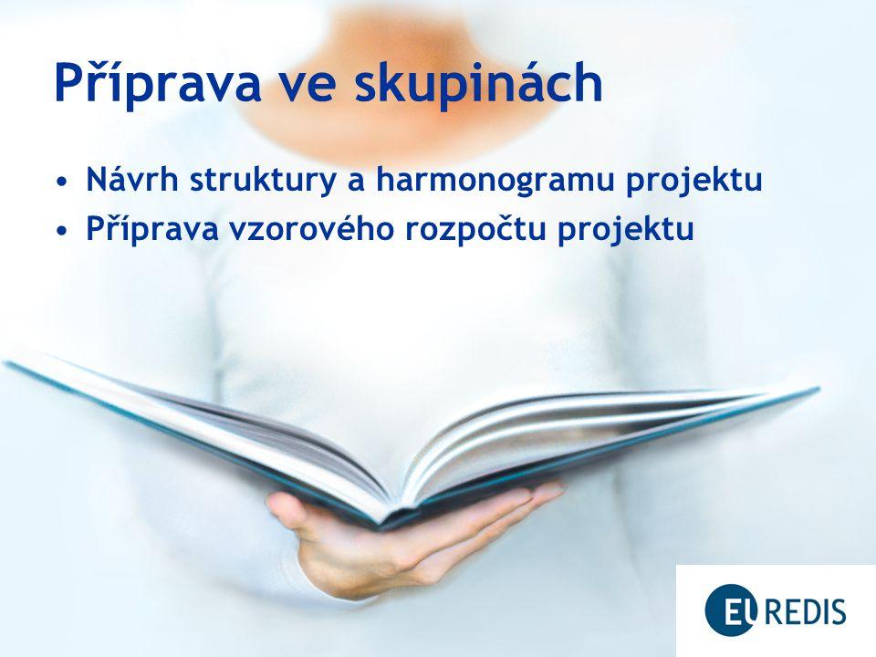 Příprava ve skupinách Návrh struktury a harmonogramu projektu Příprava vzorového rozpočtu projektu