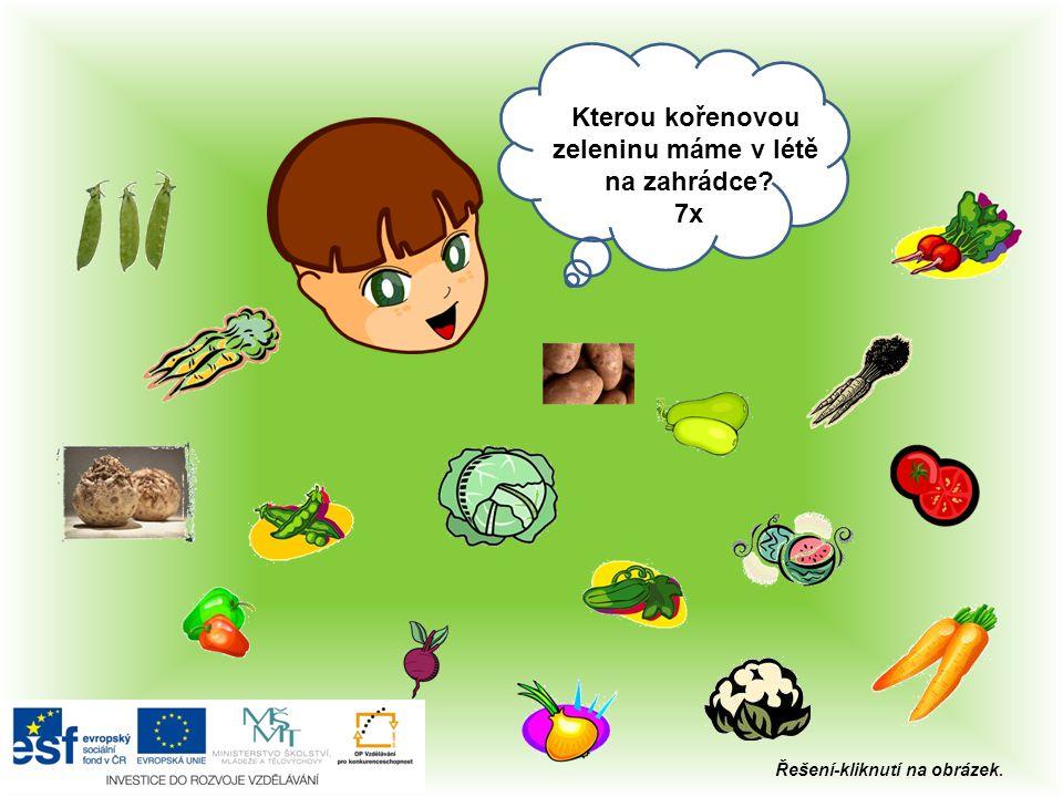 Ahoj, Kterou plodovou zeleninu máme v létě na zahrádce? 6x Řešení-kliknutí na obrázek.