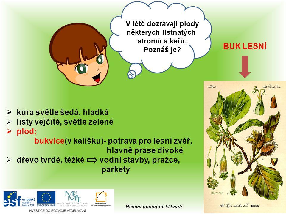  za nejstarší žijící dub v ČR je považovaný Žižkův dub v Náměšti, jehož věk dendrochronologická metoda určila na více než 1 000 let.