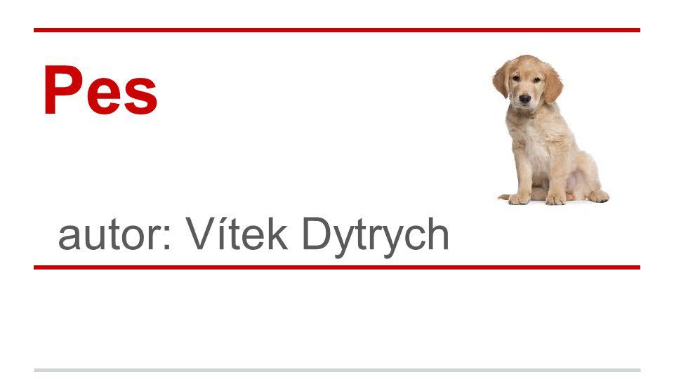 Pes autor: Vítek Dytrych